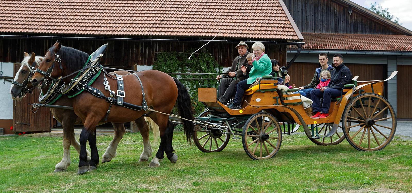 Kutschfahrten im Bayerischen Wald
