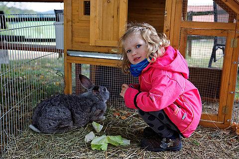 Tiere auf dem Ferienhof im Bayerischen Wald