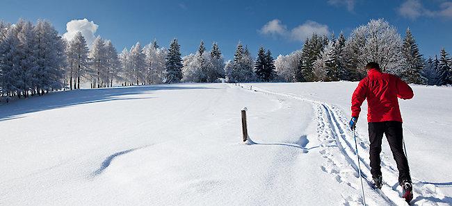 Bayerischer Wald Langlaufloipen