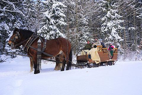 Kutschfahrten im Winter
