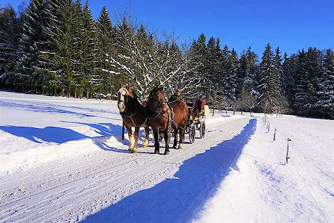 Winterurlaub mit Kutschfahrt im Bayerischen Wald