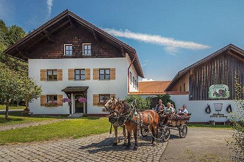 Pferdekutschfahrt in Bayern